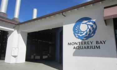 Hotels near Monterey Bay Aquarium