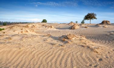 Nationalpark Drents-Friese Wold: Hotels in der Nähe