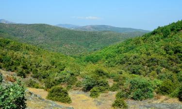 Hotels near Dadia Forest