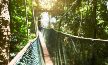 Hotéis perto de: Scenic Caves Nature Adventures