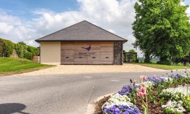 Hotels near Mount Juliet Golf Club