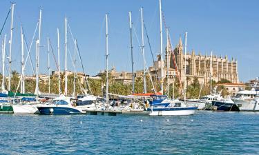 فنادق بالقرب من ميناء بَلما