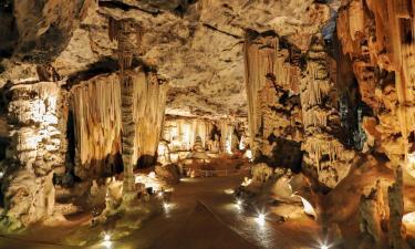 Hotels near Cango Caves