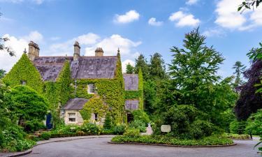 Hotels near Castle Leslie Equestrian Centre