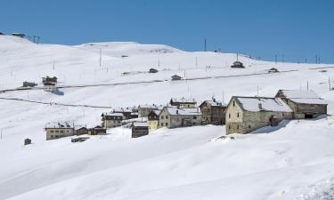 Hotels near Trepalle