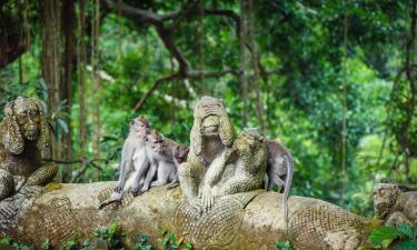 Hotels near Ubud Monkey Forest