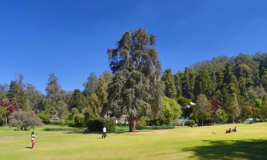 Ботанический сад Ути: отели поблизости