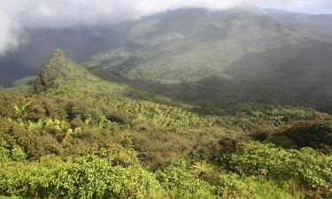 Тропический лес Эль Юнке: отели поблизости