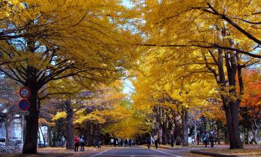 Hotels near Hokkaido University