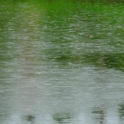 Lac de Bentota, Bentota