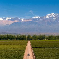 Vinařství Catena Zapata, Mendoza