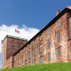 Koldinghus Royal Castle - Ruin - Museum, Vejen