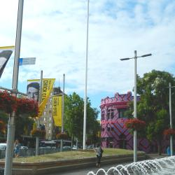 Plaza Taylor