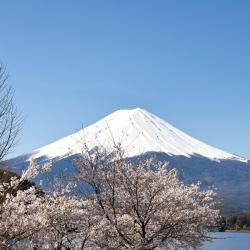 Mount Fuji, Fujikawaguchiko
