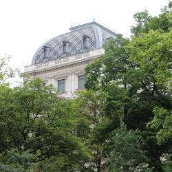 Università di Vienna