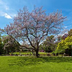Parco Stadtpark