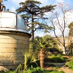 Montpellier Botanical Garden