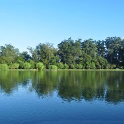Rhodes Park
