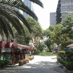 Zona Rosa, Mexico City