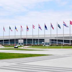 Adler-Arena Skating Centre