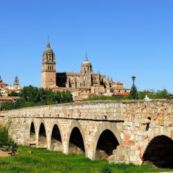 Roman bridge Salamanca