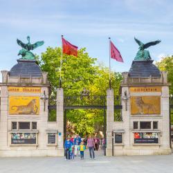 Antwerp Zoo