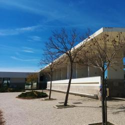 Albufeira Main Bus Station