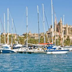 Hafen von Palma