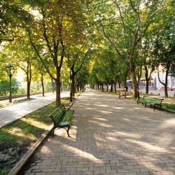 Primorsky Boulevard, Odessa