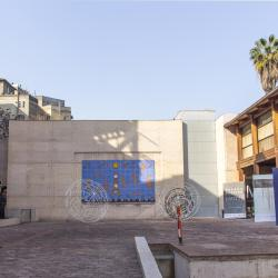 Museum of Visual Arts, Santiago