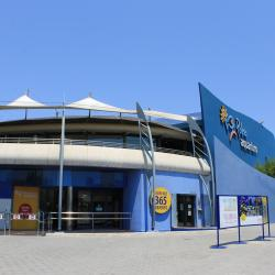 Akwarium i park Palma Aquarium