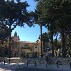 Condes de Castro Guimaraes Museum - Library