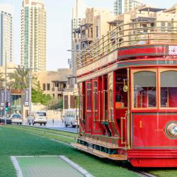 Dubai Trolley