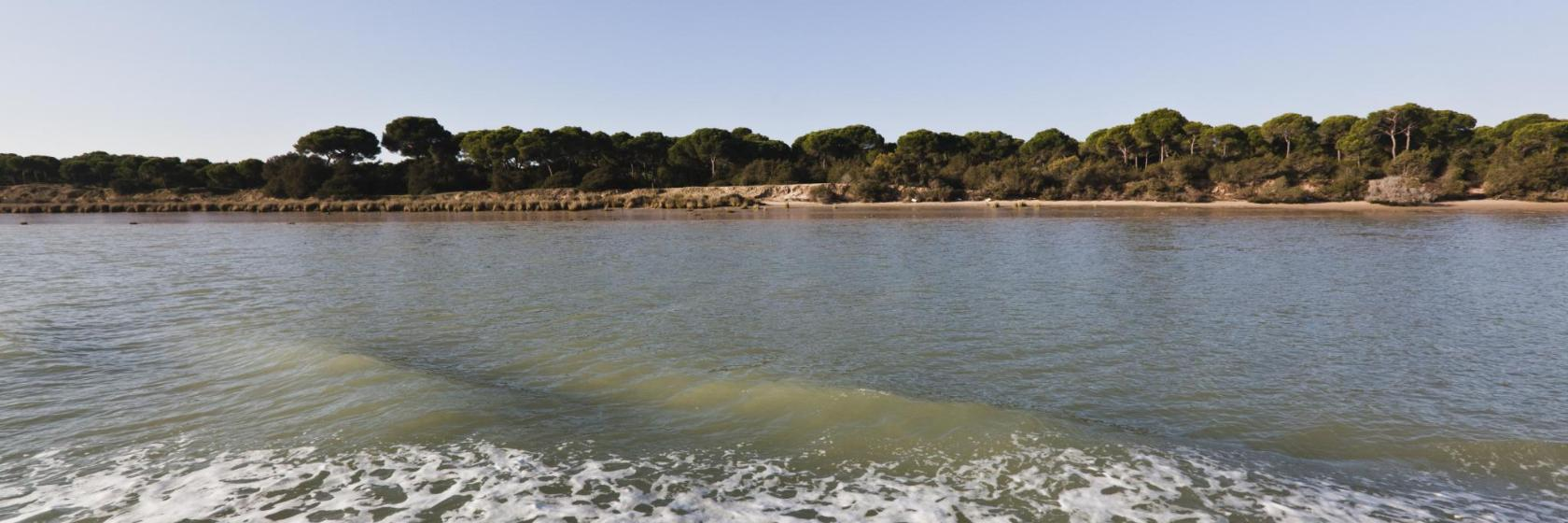 The 10 Best Donana National Park Hotels Where To Stay In Donana National Park Spain