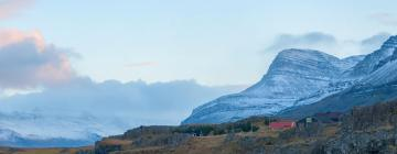 Hotels in East Iceland