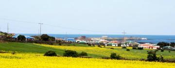 Hotels in Jeju Island