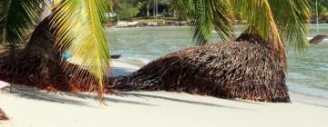 Hotels in der Region Insel Koh Kut