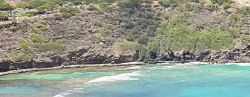Отели в регионе Остров Гавайи