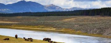 Hotels in Yellowstone National Park-West Gate