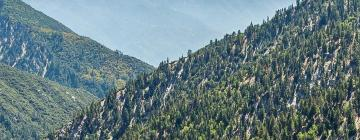 Hotels in San Bernardino Mountains