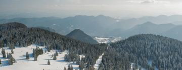 Hotels in Pamporovo Ski Region