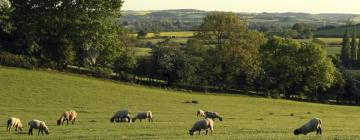 Hotels in Northamptonshire