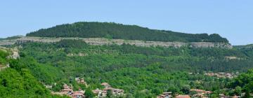 Отели в регионе Велико-Тырново