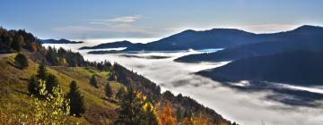 Hôtels dans cette région: Massif des Vosges