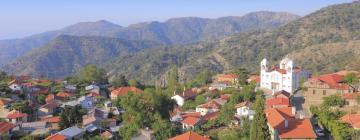 Hotels in Nicosia Region