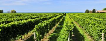 Hotels in der Region Niagara Falls and Wine Country