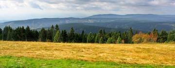 Hotels in der Region Tschechisches Erzgebirge