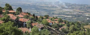 Hotels in Pieria
