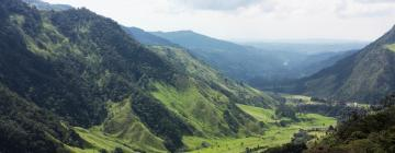 Hotels in Quindio