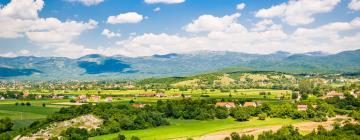 Hotels in Niksic County